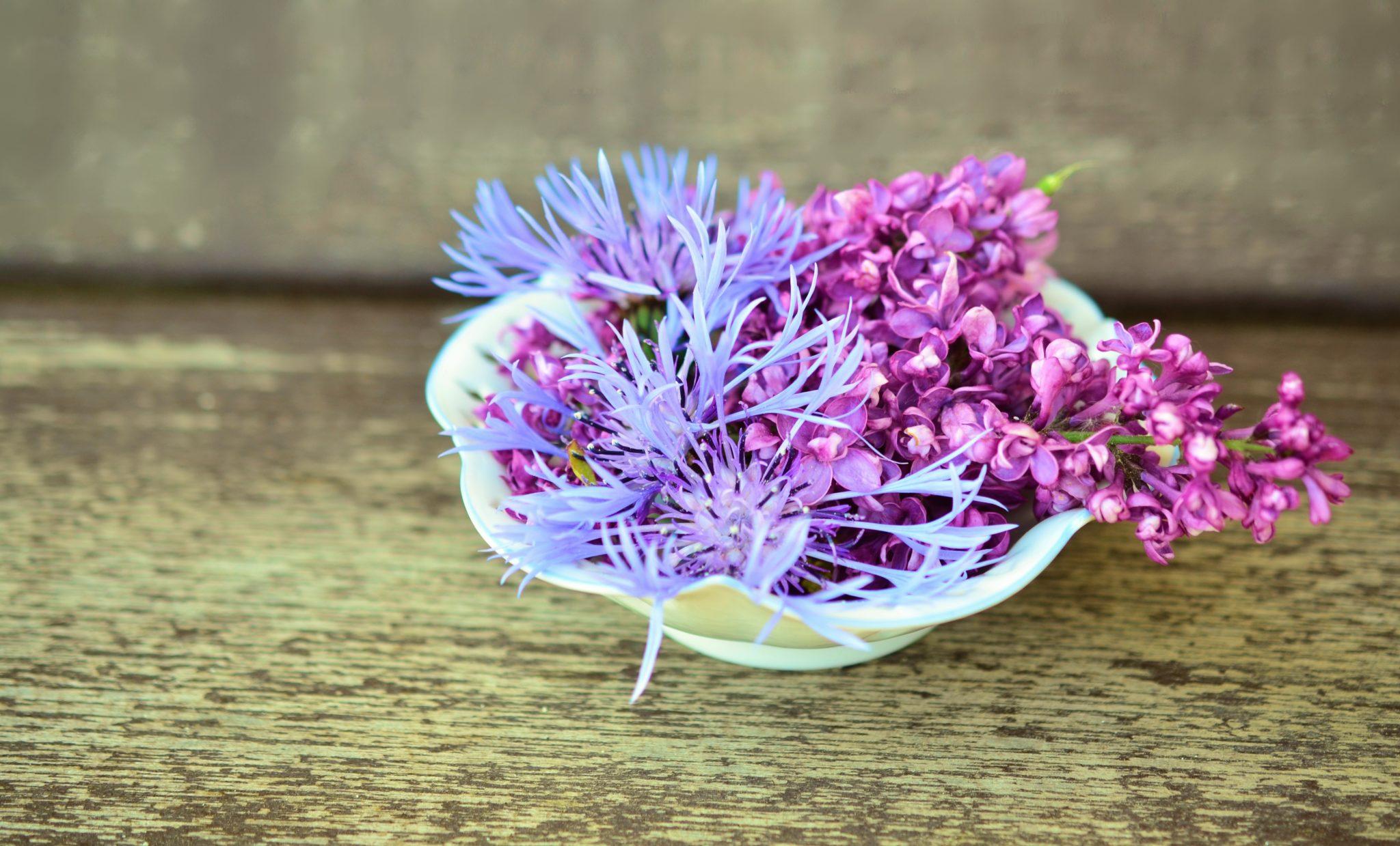 flowers-765757